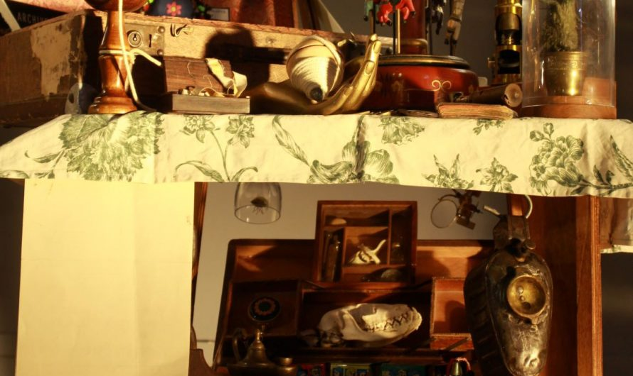 La Curieuse Collection de Herr Dienstag