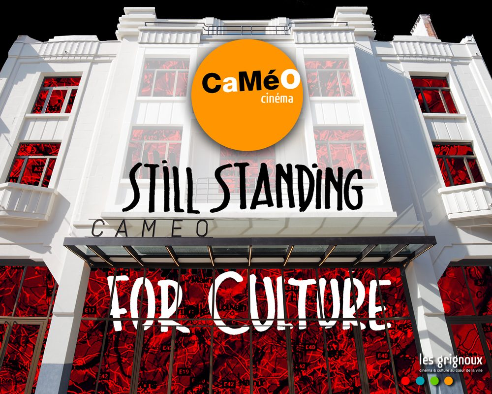 STILL_STANDING_vignettesite_cameorouge-d8855a57