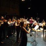 orchestre du festival-c8d5e19a